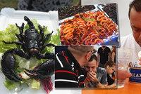 Mezinárodní triumf pro Čechy: Jarda vyhrál na festivalu extrémního jídla - snědl největší hnus na světě