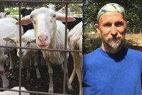 Pasáček o pastvinách v Praze: Za kozami a ovcemi vodí děti, aby si vytvořily hluboký vztah k přírodě