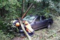 Udělalo se mu nevolno za volantem: Přejel do protisměru, narazil do stromu a zemřel