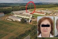 Vražda kvůli vile: Policie hledá těla Marie a Přemysla v okolí vysílače! Zákaz vstupu do lesů