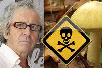 Muž na Opavsku snědl 3 klobouky muchomůrky zelené! Už dva jsou smrtelná dávka, řekl toxikolog