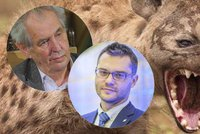 """Slova o hyenách rozlítila Polčáka. """"Zeman je vůdce smečky,"""" vypěnil europolanec"""