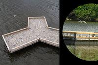 Novomlýnské nádrže zvednou hladinu kvůli suchu: Pro ptáky vyrobili umělý ostrov