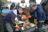 Jaro je tu? Rybáři díky teplu začali s výlovem. V rybnících ale chybí voda