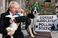 Psí lavina u uren přinesla drtivé vítězství Johnsona. Británie má nakročeno z EU