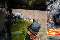 Klokani živoří na spáleništi: Záchranáři jim házejí tuny mrkve z vrtulníků