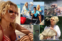 Babiš v Rožnově, Monika na Zanzibaru. Paní premiérová i Vivien si užívají ráje