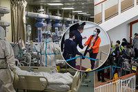 Smrtící nemoc ONLINE: Radost cestujících. Tisíce lidí pustili z karantény na výletní lodi