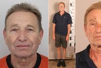 Střílel po sousedovi a bil ho kladivem! Nebezpečný muž nenastoupil do vězení, hledá ho policie