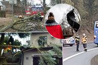 ONLINE: Orkán Yulia zastavil vlaky a láme stromy. Stoupají i řeky, sledujte radar Blesku