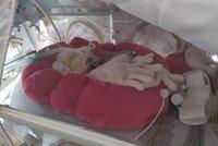 Brno hlásí babyboom: Rodí i padesátileté ženy, náhradní matky a dvojčat ubývá