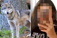 Nikolku (13) napadla na divoká šelma! Má jasno její rodina: Roztrhané šaty a vytrhané vlasy mohlo způsobit i docela jiné zvíře, myslí si šéf myslivců
