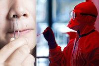 Koronavirus útočí na důležité buňky v nose. Můžete přijít o čich, varují vědci