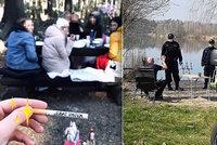 Narozeninová oslava v časech karantény? Dívky sdílely fotografie z utajené párty uprostřed lesa!