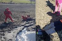 Chlapečka uvěznila bahenitá past: Z nádrže v Praze 13 ho vytáhli až hasiči