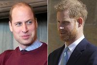 Rozzuřený William vrací úder bratrovi Harrymu: Co říká, není pravda! Chová se neuctivě