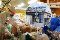 Sestřičky popsaly koronavirovou šichtu: Pot stéká pod brýle, těžko se dýchá! Pacienta musí otáčet šest lidí