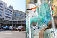 Koronavirus v pražských nemocnicích: Pacientů mírně přibývá, těžký průběh mají jednotky z nich