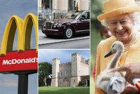 Pompézní majetek oslavenkyně Alžběty II. (94): Labutě, fast food i šestina planety!