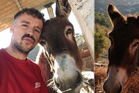Dojemné shledání po karanténě: Plakal farmář i jeho oslík
