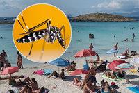 Invaze komárů tygrovaných v dovolenkovém ráji: Přemnožili se kvůli koroně, přenášejí vážné nemoci