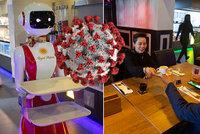 """Místo číšníků vsadila restaurace na roboty. """"Neosobní,"""" čílí se hosté, majitel hledá jména"""