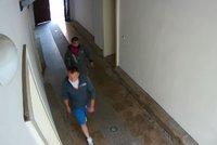Zpackané vloupání v Praze 8: Na lumpy v bytě čekalo překvapení! Vzali nohy na ramena, hledá je policie