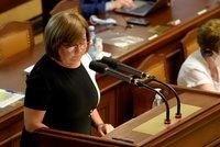 Paušální daň uspěla ve Sněmovně. Využít ji budou moci podnikatelé s příjmem do milionu