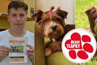 Coco zachráněná zmnožírny zmizela. Pátrají po ní dobrovolníci, nový majitel nabízí odměnu