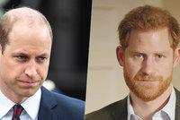 William opět vytočený z Harryho: Nešpiň vlastní krev!