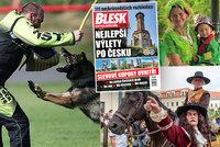 Tipy na víkend: Švédové zase obsadí Brno, v Třeboni se zjeví Čochtan a kynologové prověří psy