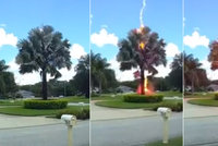 Neuvěřitelné video: Elektrický výboj z čistého nebe udeřil do stromu. A bouřka v nedohlednu