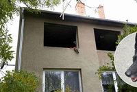 Věrný pes Bengi zachránil páníčka při požáru: Sám ale v plamenech zahynul