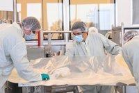 Experti řeší záhadu: Město má v kanalizaci koronavirus, ale nikdo není nakažen