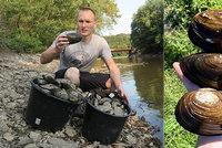 Škeble a vzácní raci se stěhují z přehrady v Plzni: Kvůli opravě mostu klesá hladina vody