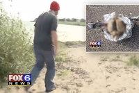 Muž našel na pláži mozek, při prozkoumání ho rozřízl: Vypadá jako lidský!
