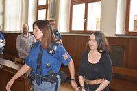 Za brutální vraždu manželů z mobilheimu výjimečný trest? Šokující událost z Písecka znovu před soudem