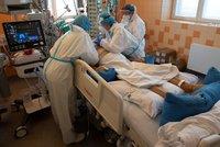 Koronavirus ONLINE: Za den v Česku přibylo 8325 případů, 2500 lidí leží v nemocnicích