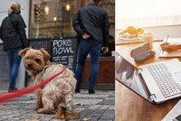 V Praze je nejvíce lidí, kteří zůstávají doma. Není zájem ani o restaurace nebo obchodní centra