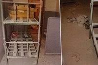 Exkluzivní fotky z věznice na Borech: Tady záhadně uhořel vězeň Petr K. (†44)! U postele měl řetěz!