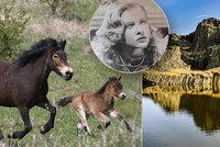 Kam na vzduch v době karantény? 15 přírodních krás Česka, kam ještě můžeme!