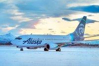 Boeing 737 srazil při přistání medvědici s mládětem. Medvídě přežilo, matka ne