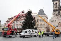 ŽIVĚ: Vánoční strom na Staromáku už odstrojují. Studenti z něj vyrobí nábytek pro seniory