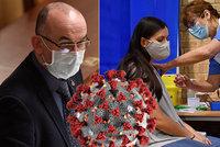 Zdravotníci, senioři, ostatní až v květnu. Strategie odhalila postup očkování v Česku