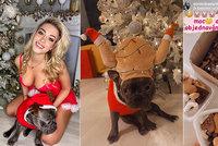 Vánoční přání žhavé Dominiky Myslivcové: Chci prima chlapa! Ale chudým říkám »papa«