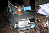 Řidič (†46) který smrtelně havaroval na Třeboňsku, vezl vánoční dárky a cukroví: Před smrtí prý nebezpečně riskoval