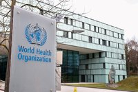 Vakcinační pasy čelí nevoli WHO. Očkování nemusí na boj s virem stačit, brání se jim