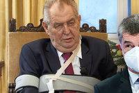 Zeman vyhlásil volby k nelibosti Babiše. Jsou za tím peníze na kampaň, ani ČSSD to není vhod