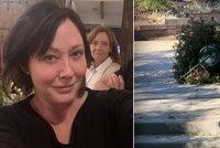 Brenda z Beverly Hills v posledním stadiu rakoviny: Fotkou vyděsila fanoušky!