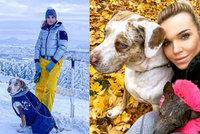 Těžká volba Hany Mašlíkové: Dítě nebo pes! Modelka nemohla jinak...